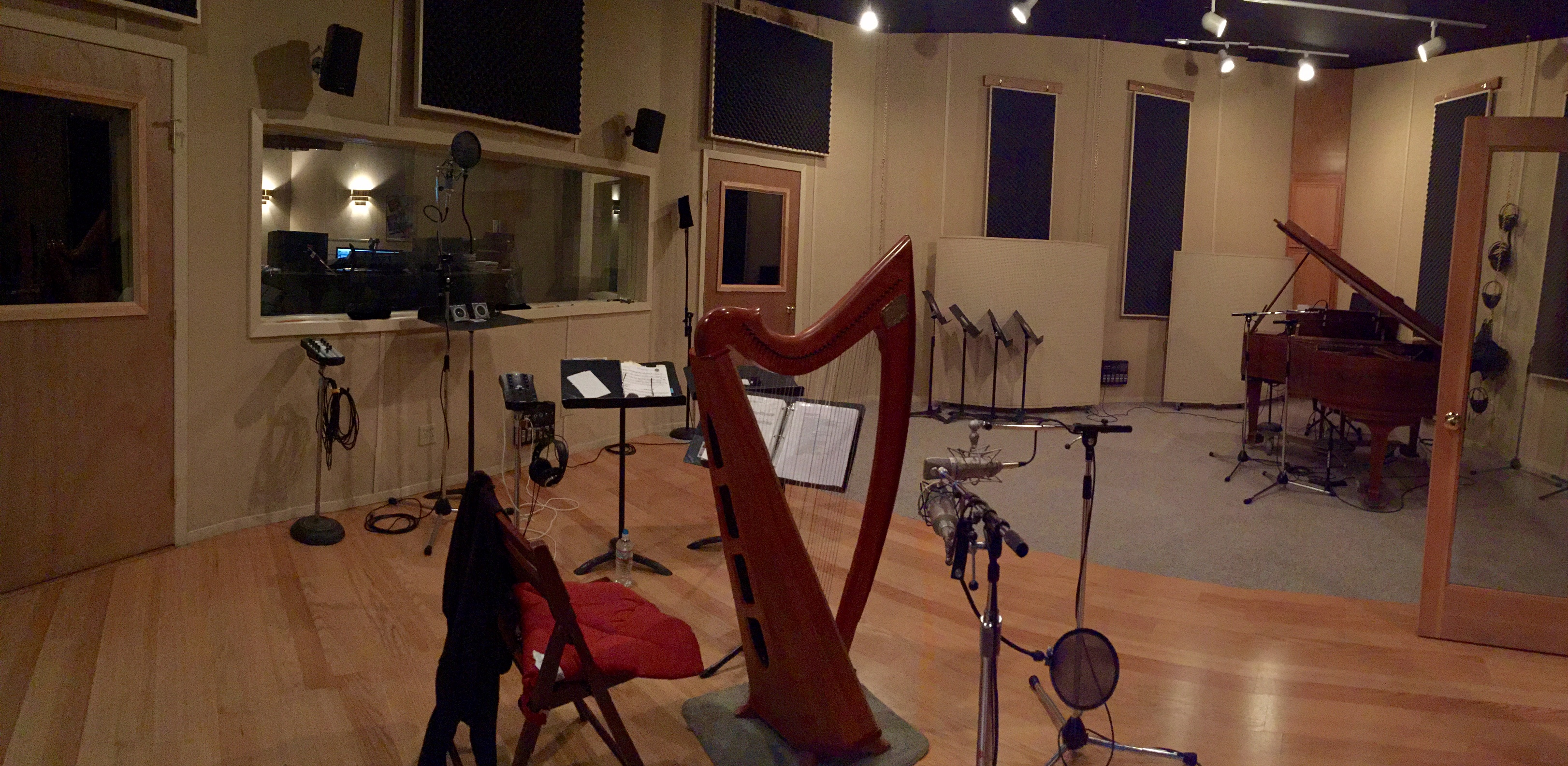 Anne Roos' harp in the Recording Studio
