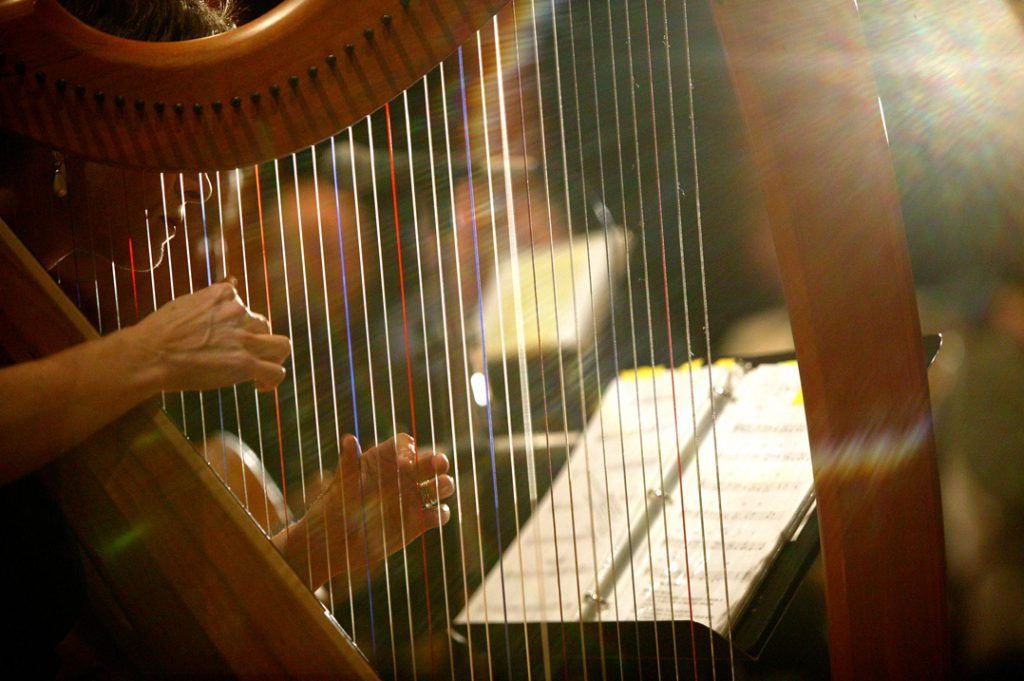 Anne Roos Plays the Harp in Positive Light