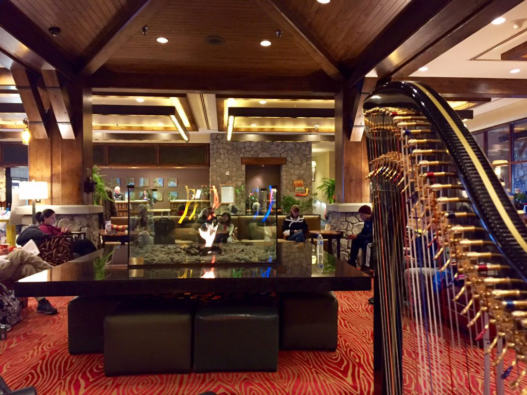 Harpist Anne Roos Performs in Which Hotel Lobby?