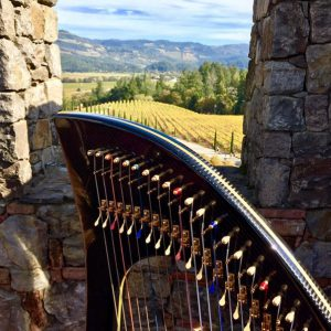 View with harp from Castello di Amorosa (Photo credit: Anne Roos)
