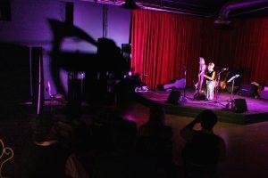 Harpist Anne Roos performing on stage