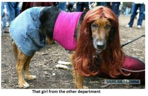 Doggie Girl from Other Department