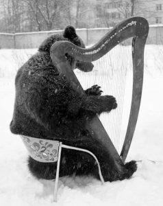 Bear Playing Harp in Snow